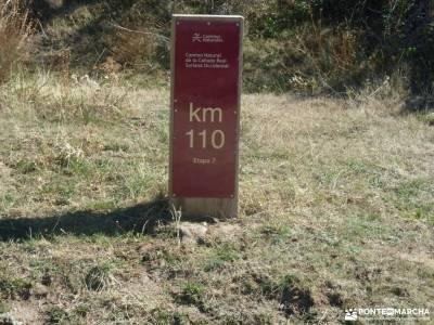 Hayedo Montejo-Cuerda Pinilla; senderismo fin de semana viajes agosto viajes en septiembre